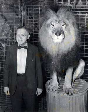 Fred MGM Lion